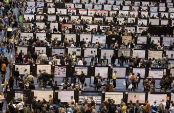 Docentes del DCCS participan en importantes conferencias internacionales de Neurociencia