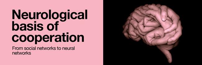 neurological-basis-of-cooperation