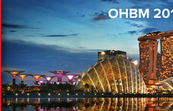 NeuroCICS Team will be on the OBHM Annual Meeting, Singapur 2018