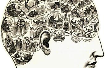 Leda Cosmides y Tamas David-Barrett exploraron el comportamiento humano en jornadas interdisciplinarias
